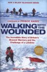 Walking with the Wounded, by Mark McCrum