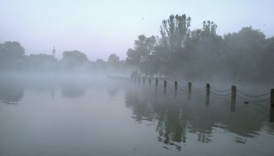 Photograph of Regents Park by Jonathan Stone