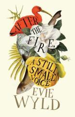 After the fire, a still small voice, by Evie Wyld