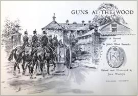 Guns at the Wood by Joan Wanklyn