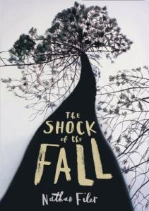 The shock of the fall, by Nathan Filer