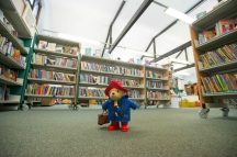 Paddington Bear visits Paddington Library, November 2014. Photos courtesy of Gavin Conlon Photography Ltd.