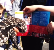 Tommy the Tegu finds out what's going on at the local library - Walterton & Elgin Community Homes' Summer Festival 2015