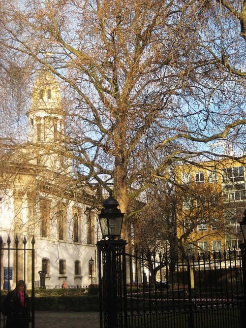 St Marylebone Church and back of Ferguson House