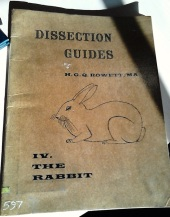 Dissection Guide IV: the Rabbit, by HGQ Rowett, MA