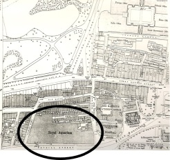 1893 ordnance survey map showing The Royal Aquarium