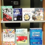 Shelf Help Collection display at Marylebone Library, April 2016