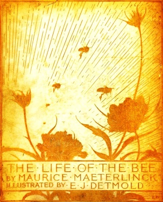 The Life of The Bee by Maurice Maeterlinck, 1911. Front cover