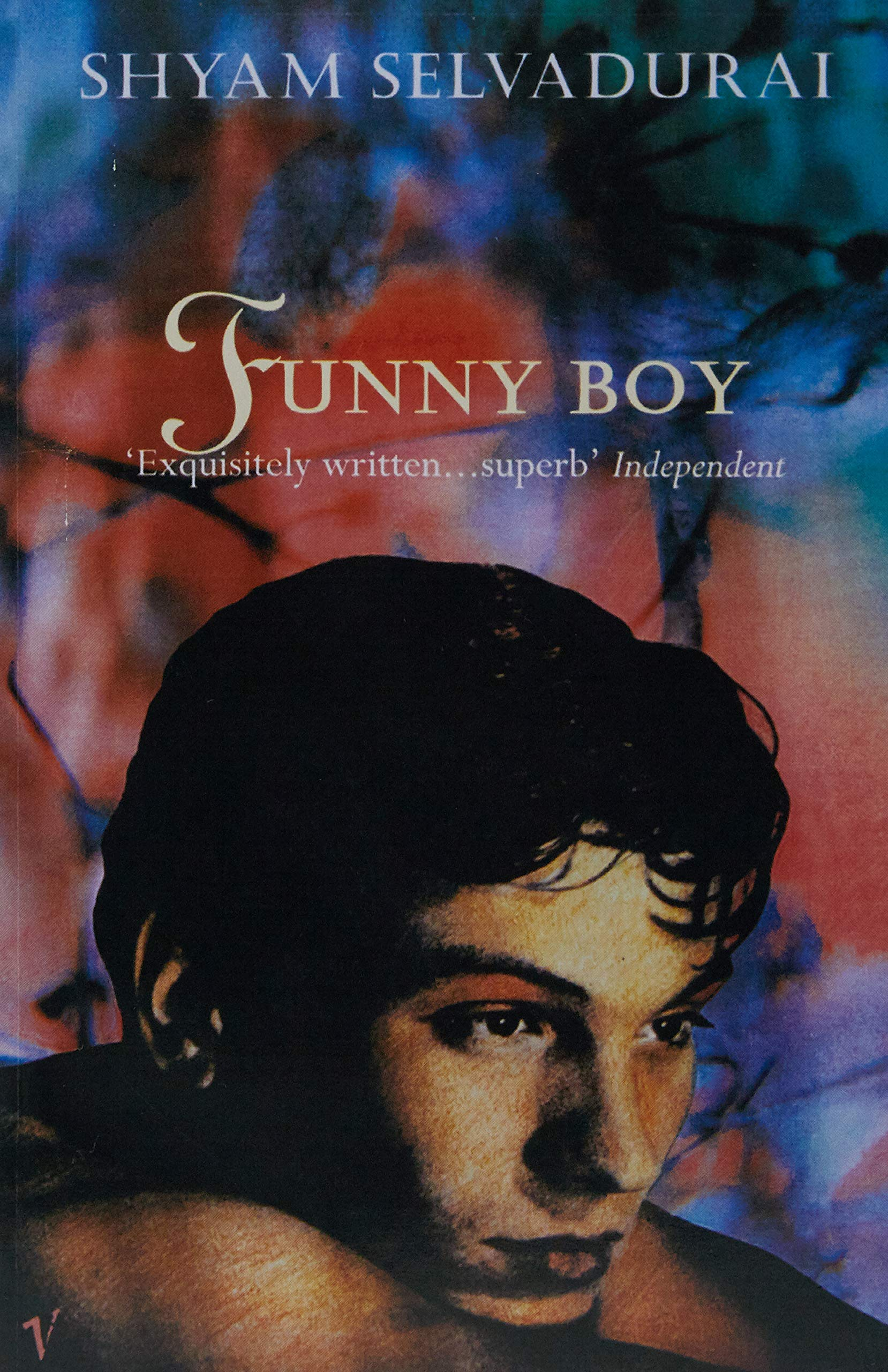 funny boy book cover